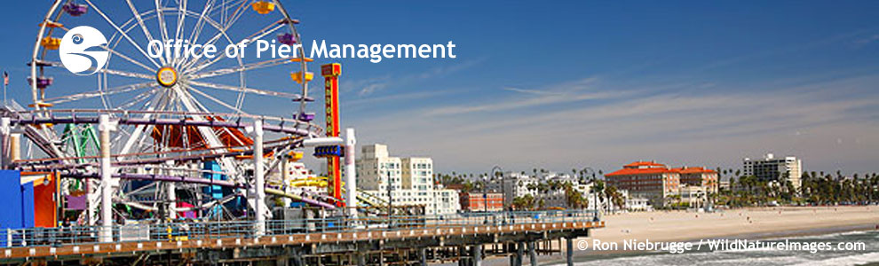 City Of Santa Monica Search Backing Header Opm