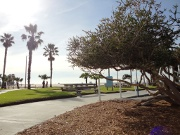 south-beach-park-path