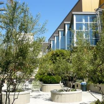 Santa Monica Housing and Economic Development