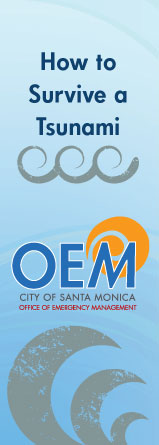 OEM Tsunami Awareness Brochure Image