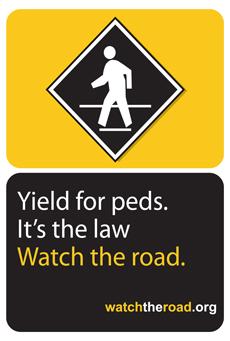 Santa Monica Pedestrian Safety