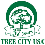 Tree City USA - 37 years